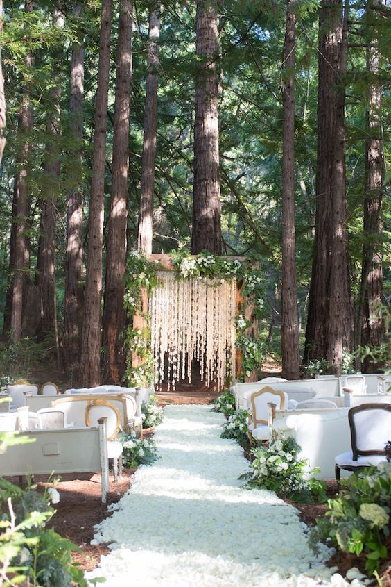 Redwood Forest Destination Wedding | Arizona Wedding Planner